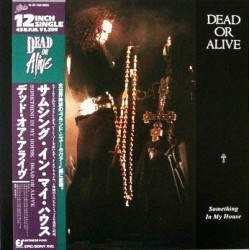"Dead Or Alive - 12""  JAP - Something In My House"